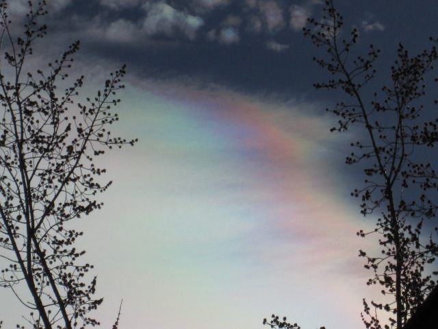 This cloud cover, an example of SRM (Solar Radiation Management), reveals the toxins we all are breathing, every day. The colorful sheen is from light being refracted by heavy metal nano-particulates. I find it disturbingly similar to the sheen left on water by gasoline.