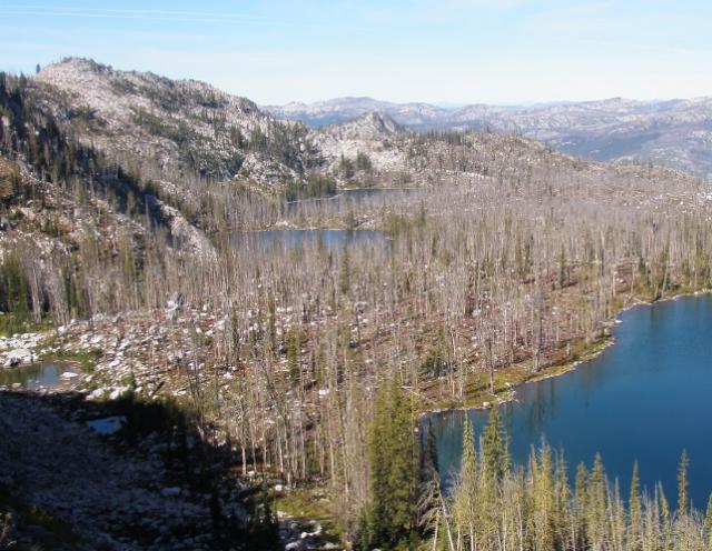 Payette National Forest, Idaho, USA