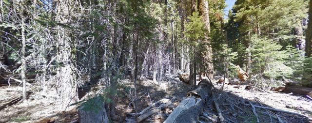 Lassen Volcanic National Forest, California